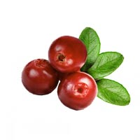 BERRY BEAUTY BOOSTER